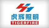 虎辉集团网站建设完成上线!