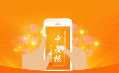 中广核春节应用