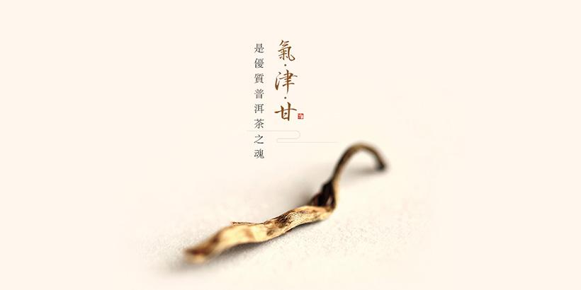 广州网站建设-今大福网站建设案例说明