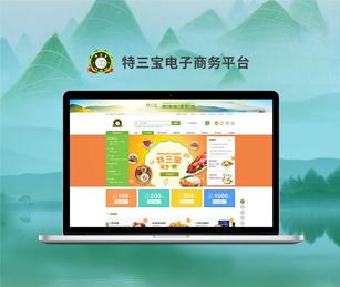 广东高质资源环境研究院有限公司特三宝电子商务网站建设开通上线!