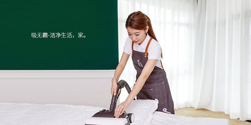 广州网站建设-吸无霸官网建设案例说明
