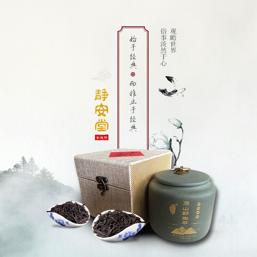 广州网站建设-静安堂官网建设案例说明