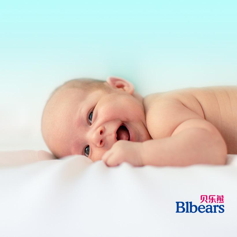 广州网站建设-贝乐熊官网建设案例说明