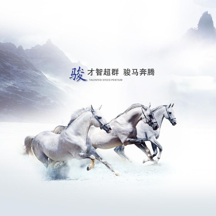 广州网站建设-金骏投资官方门户网站建设案例说明