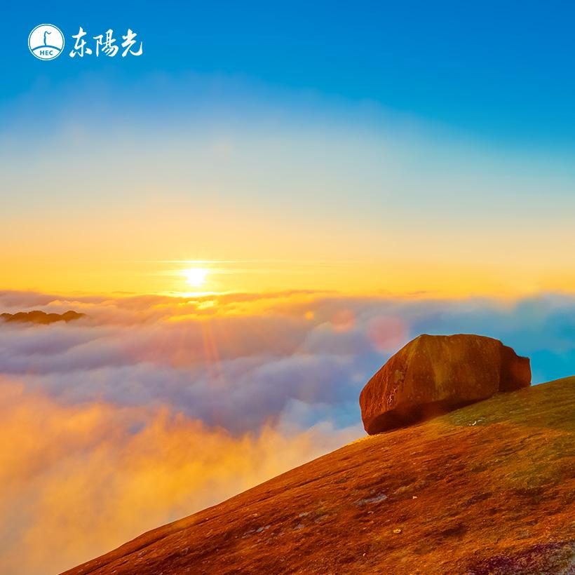 广州网站建设-东阳光集团网站建设